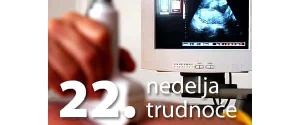 22-nedelja-trudnoce