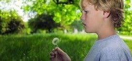 Rani jezički razvoj dece s poremećajem iz spektra autizma