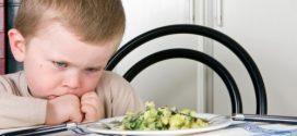 Šta kad dete odbija da jede u vrtiću?