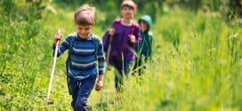 7 saveta kako u deci probuditi ljubav prema planinarenju i šetnji u prirodi
