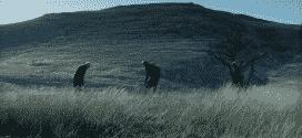 """Domaći film """"Između dana i noći"""" u bioskopima od 6.juna-MCF"""