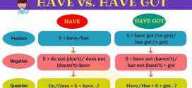Vežbanje engleski jezik – 4. razred – Questions – Do Does Have Got Can