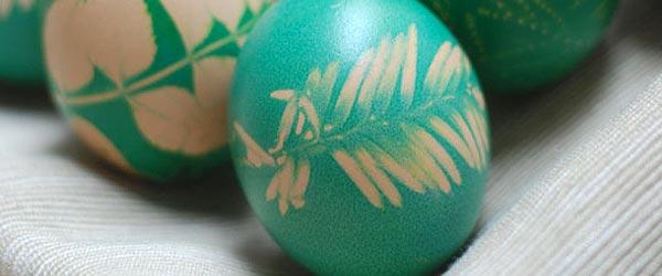 Farbanje jaja lišćem i cvećem