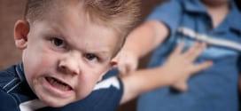 Kad dete tuče drugu decu