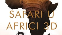 Safari u Africi – MCF