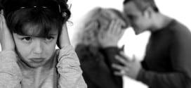 Porodični zakon-Nasilje u porodici