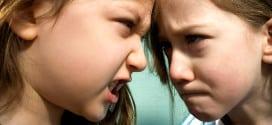 Rivalitet između braće i sestara