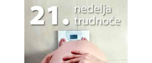 21-nedelja-trudnoce