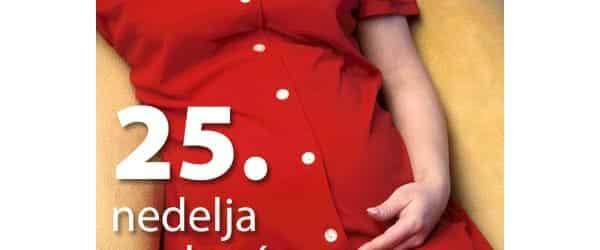 25-nedelja-trudnoce