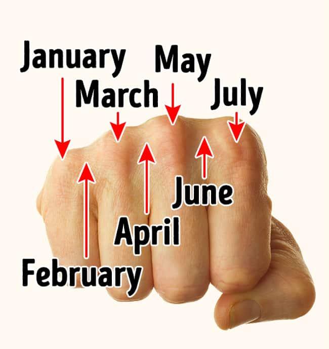 Meseci-u-godini