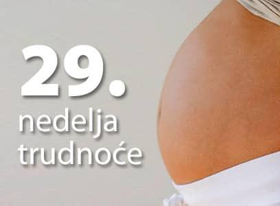 29-nedelja-trudnoce