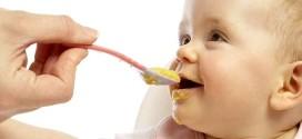 Organska hrana za bebu